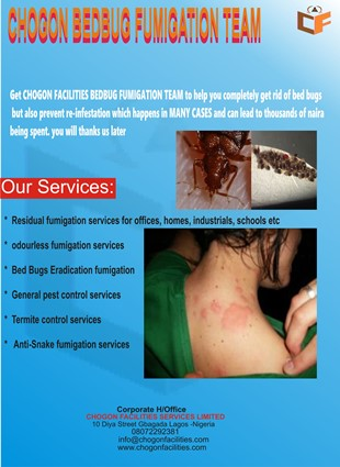 NEW bed bug flyers.jpg1