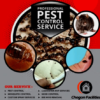 Pest control services in Nigeria